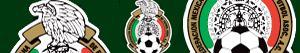 Pintar Escuts del Campionat Mexicà de Futbol - Primera Divisió FMF