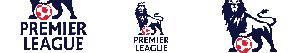 Pintar Banderes i Escuts de Lliga anglesa - Premier League